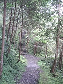 棲蘭馬告100神木生態之旅:步道