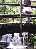 松羅國家步道:PIC_0049
