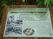 礁溪林美石磐步道:DSCF0906