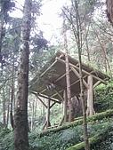 棲蘭馬告100神木生態之旅:觀景庭