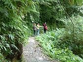礁溪林美石磐步道:DSCF0907