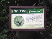 松羅國家步道:PIC_0056