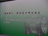 宜蘭古城巡禮:SANY2933.JPG
