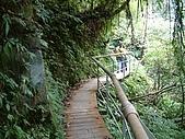 礁溪林美石磐步道:DSCF0911