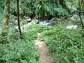 礁溪林美石磐步道:DSCF0913