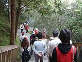 棲蘭馬告100神木之旅:DSCF5104