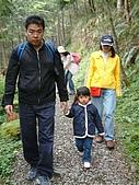 棲蘭馬告100神木之旅:DSCF5105