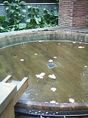 礁溪-溫泉溝:花瓣浴