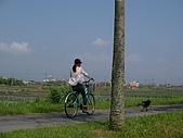 冬山河單車之旅:冬山河河堤單車道