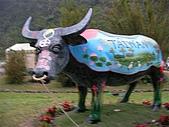 2009宜蘭綠色博覽會:ㄧ佳村青草園(台灣五
