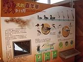 無尾港-港邊社區:PC201469