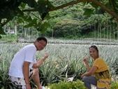 員山鄉 - 二湖鳳梨:SANY0943.JPG