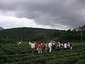 中山休閒農業區單車之旅:SANY0052.JPG