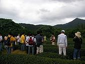 中山休閒農業區單車之旅:SANY0055.JPG