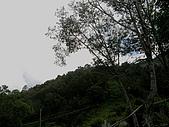 羅娜的一角:0902-19.jpg