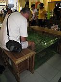 2009-10-29 峇里島/NATALIE SPA/MATAHARI(太陽百貨)/:500-太陽百貨裡的去角質 (FISH SPA).JPG
