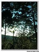 2007.07.08太平山星軌:A22