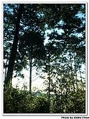 2007.07.08太平山星軌:A23