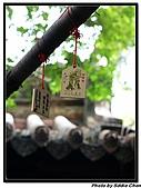 08.04.06 阿里山遊:IMG_5107.jpg