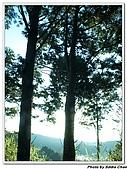 2007.07.08太平山星軌:A24