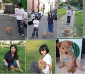 102年12月 「Yahoo網友大方秀」相簿主題投稿活動:[tracysung2002] 97.5.17出門散步