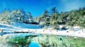 103年03月 「雪跡」相簿主題投稿活動:雪降福壽山營地 <a target='_blank' href='/big_point/4308345'>[更多big_point的照片]</a>