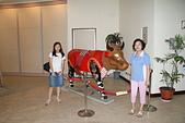 103年01月 「湯の旅」相簿主題投稿活動:[tracysung2002] 穿紅衣的牛