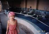 103年01月 「湯の旅」相簿主題投稿活動:[tracysung2002] 為什麼這麼快就要回家?