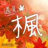 101年11月 「遇見。楓」相簿主題投稿活動:event_400x400.jpg