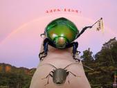 103年08月 「加油!高雄」相簿主題投稿活動:高雄後花園的彩虹 <a target=''_blank'' href=''/r3.go/3157584''>[更多r3.go的照片]</a>