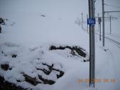 103年03月 「雪跡」相簿主題投稿活動:DSCN1430_626a.JPG <a target='_blank' href='/a4987175168/4214984'>[更多a4987175168的照片]</a>
