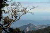 102年1月 「走,上山去 ~」相簿主題投稿活動:[le3260256] 大雪山國家公園