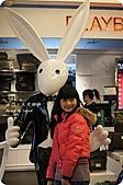 100年3月『喜兔迎春』相簿主題投稿活動:[acheng0427] DSC06096.jpg