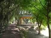 102年3月 「單車輕旅行」相簿主題投稿活動:[lsg2006] 至善公園 (13).jpg