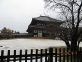 103年03月 「雪跡」相簿主題投稿活動:奈良東大寺 <a target='_blank' href='/kitty1357/18641999'>[更多kitty1357的照片]</a>