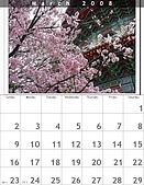 Xuite相簿2008月曆:200803