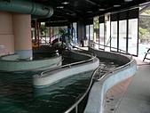 103年01月 「湯の旅」相簿主題投稿活動:[tracysung2002] 溫泉SPA