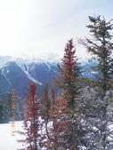 103年03月 「雪跡」相簿主題投稿活動:硫磺山纜車35觀景台眺望-北方,聳立的瀑布山近在眼前.JPG <a target='_blank' href='/cloudheart64/6261544'>[更多cloudhea
