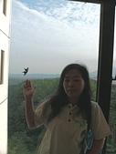 103年01月 「湯の旅」相簿主題投稿活動:[tracysung2002] 玻璃窗外有隻鳳蝶