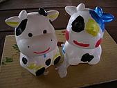 2009元宵奔牛去:[moto8831509] 排排坐,看牛牛!