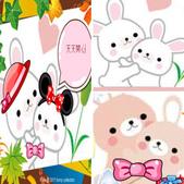 101年9月 「創意封面DIY」相簿主題投稿活動:[yoyo0724] 可愛的兔子圖片