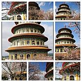 100年1月『櫻花季』相簿主題投稿活動:[johnsontsai1966] 天元宮_M.jpg