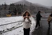 103年03月 「雪跡」相簿主題投稿活動:手抓人生第一把雪 <a target='_blank' href='/tracysung2002/18581796'>[更多tracysung2002的照片]</a>