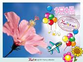 100年12月 「我的明信片」相簿主題投稿活動:天空之花.jpeg