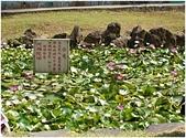 103年01月 「湯の旅」相簿主題投稿活動:[tracysung2002] 硫磺睡蓮池