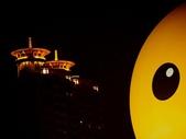 102年11月 「全民呱呱呱」相簿主題投稿活動:[chingyi717] 黃色小鴨  所向披靡