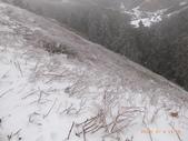 103年03月 「雪跡」相簿主題投稿活動:RIMG0324.JPG <a target='_blank' href='/a4987175168/5463437'>[更多a4987175168的照片]</a>