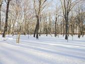 103年03月 「雪跡」相簿主題投稿活動:富士山下的旅館雪景 <a target='_blank' href='/thwsby/18686903'>[更多thwsby的照片]</a>