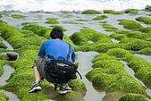 9904『春遊風光』相簿主題投稿活動:[hpfreebird] 老梅綠石槽 0320-10 020.jpg