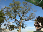 103年12月 「2014年最佳相片」相簿主題投稿活動:DSC07593.JPG <a target='_blank' href='/tracysung2002/19341308'>[更多tracysung2002的照片]</a>